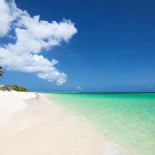 Anegada Island photo 10