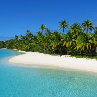 Natural and tropical coastline with sandy beach and green forest