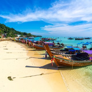 Phi Phi Islands photo 6