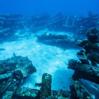 Rum Cay photo 7