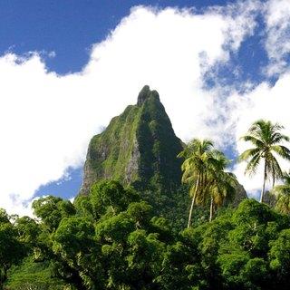 French Polynesia photo 7
