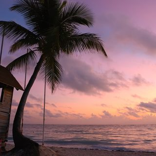 Wooden hut with palm tree and the sea with the sky in beautiful colours in the background