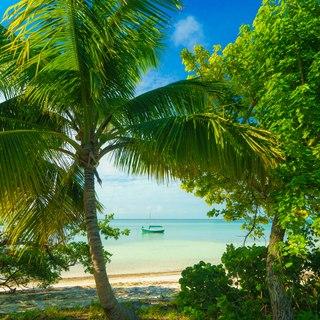 Abacos Islands photo 16