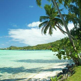 French Polynesia photo 3