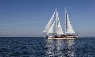 Erato yacht charter Custom Motor/Sailer Yacht