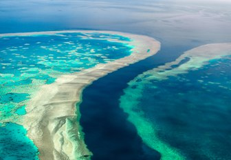 great barrier reef from above, corals and sea life from above