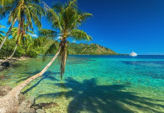 Moorea beach in Tahiti
