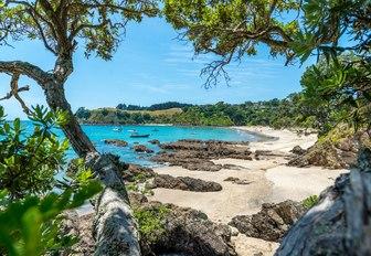 Palm Beach view, Waiheke Island, New Zeland, on a beautiful sunny day