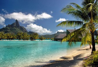 view of white sand beach lapped by turquoise waters in Tahiti