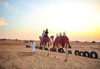 camel ride in the desert nearby Dubai as the sun goes down