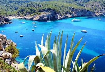 Beach view Ibiza