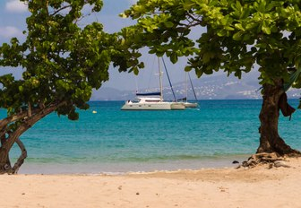 catamaran anchored in Martinique waters as seen from a sandy beach