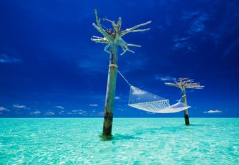 a hammock is tied to two trees in a secluded spot in the Maldives