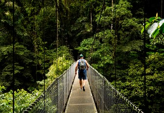man walks along suspension bridge in the verdant Costa Rican rainforest