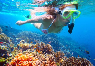 snorkeler discovers the marine-rich waters of the Great Barrier Reef in Australia