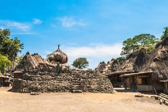 centre of ngada village lined with thatched roof houses