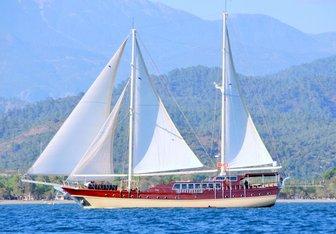 Seahorse yacht charter Custom Sail Yacht
