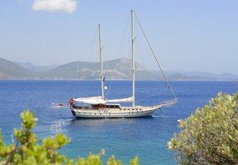 Cobra III yacht charter Cobra Yacht Motor/Sailer Yacht