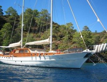 Aegean Schatz  photo 14