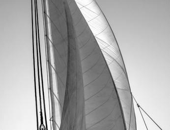 Arktos photo 38
