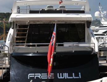 Free Willi photo 5