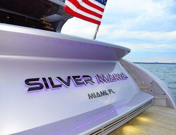 Silver Mama photo 28