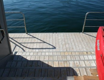 Sharkwater photo 16