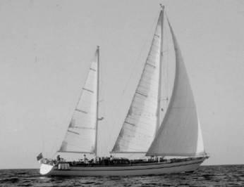 Lady Sail photo 4