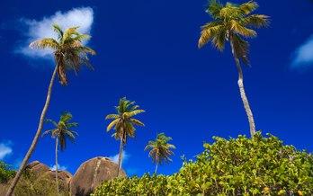 British Virgin Islands itinerary