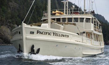 Cancellation on Pacific Yellowfin