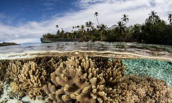 Discover the Solomon Islands Aboard M/Y 'De Lisle III'