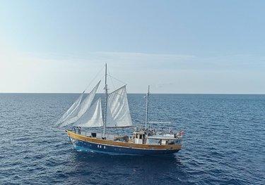 Truelove charter yacht