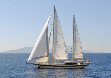Carpe Diem V charter yacht