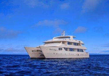 Petrel charter yacht