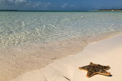 Relax and come alive in Great Guana Cay