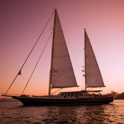 Daima Yacht Sunset Profile