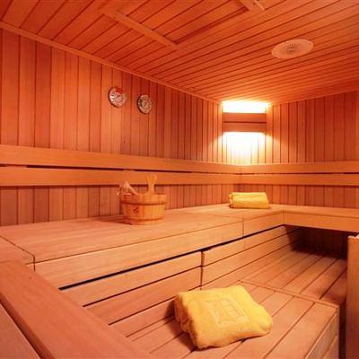 SS Delphine Yacht Sauna