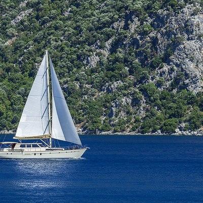 Tango Charlie Yacht