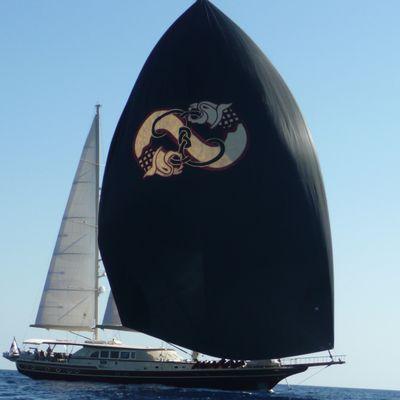 Daima Yacht Full Sail