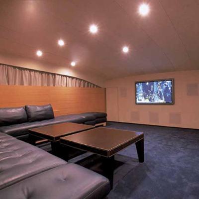 Sheleila Yacht Cinema room