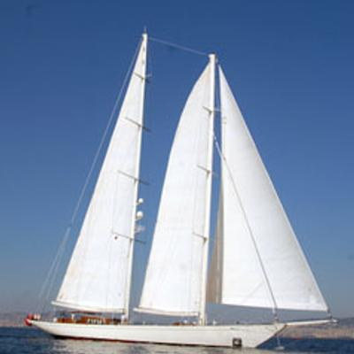 Gweilo Yacht Full Sail