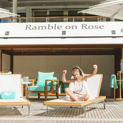 Ramble On Rose