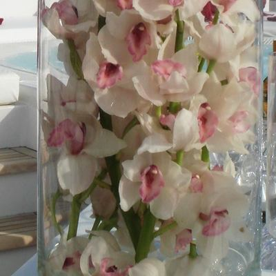 Elegant 007 Yacht Detail - Flowers