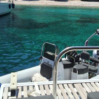 Cute Little Cat Yacht