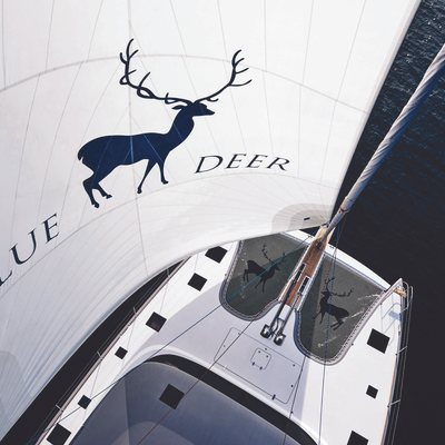 Blue Deer Yacht