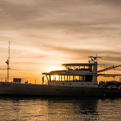 Grey Wolf II Yacht