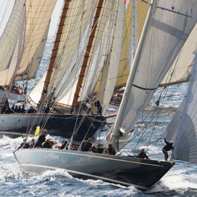 Shamrock V Yacht Regatta