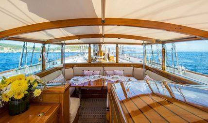 Shenandoah Charter Yacht - 3