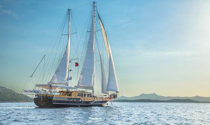 Dea Delmare Charter Yacht - 6