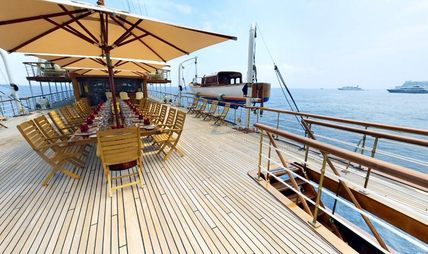 SS Delphine Charter Yacht - 8